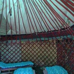 Отель Turkestan Yurt Camp Кыргызстан, Каракол - отзывы, цены и фото номеров - забронировать отель Turkestan Yurt Camp онлайн бассейн фото 3