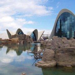Отель Rooms Ciencias Испания, Валенсия - 1 отзыв об отеле, цены и фото номеров - забронировать отель Rooms Ciencias онлайн бассейн фото 2