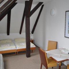 Hotel Svornost 3* Стандартный номер с различными типами кроватей фото 3