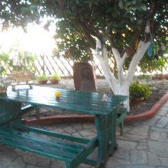 Отель Studios Oasis бассейн