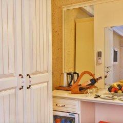 Santefe Hotel Турция, Стамбул - 1 отзыв об отеле, цены и фото номеров - забронировать отель Santefe Hotel онлайн удобства в номере фото 2