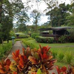 Отель Chachagua Rainforest Ecolodge 3* Стандартный номер с различными типами кроватей фото 19