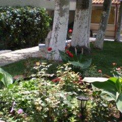 Отель Olympic Bibis Hotel Греция, Метаморфоси - отзывы, цены и фото номеров - забронировать отель Olympic Bibis Hotel онлайн фото 5