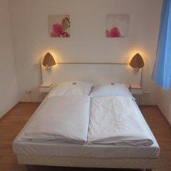 Hotel Waldesruh 2* Стандартный номер с двуспальной кроватью фото 13