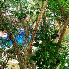 Отель Sairee Hut Resort фото 8
