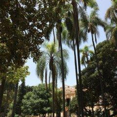 Отель Casa Rosa Италия, Палермо - отзывы, цены и фото номеров - забронировать отель Casa Rosa онлайн пляж