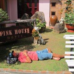 Отель Villa Pink House Вьетнам, Далат - отзывы, цены и фото номеров - забронировать отель Villa Pink House онлайн фото 7