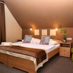 Отель Alfa Hotel és Wellness Centrum Венгрия, Силвашварад - отзывы, цены и фото номеров - забронировать отель Alfa Hotel és Wellness Centrum онлайн комната для гостей фото 4