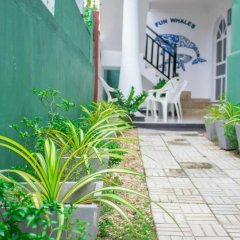 Fun whales Guest house and Hostel фото 2