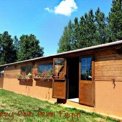 Отель Country Club Primi Faggi Санто-Стефано-ин-Аспромонте бассейн фото 3