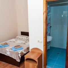 Гостевой Дом Маленькая Греция Стандартный номер с разными типами кроватей фото 3