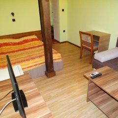 Hotel Grivitsa Стандартный номер фото 6