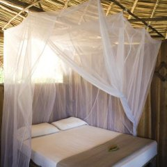 Отель Al Natural Resort комната для гостей фото 3