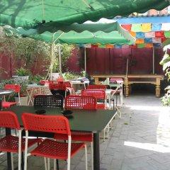 Chengdu Traffic Youth Hostel питание фото 3