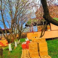 Отель Three Jugs B&B Ереван детские мероприятия