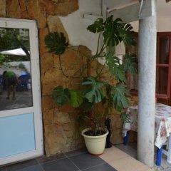 Гостиница Guest House on Gorkogo street 51 в Анапе отзывы, цены и фото номеров - забронировать гостиницу Guest House on Gorkogo street 51 онлайн Анапа спа
