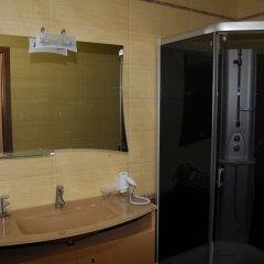 Гостиница Белый Грифон Стандартный номер с различными типами кроватей фото 22