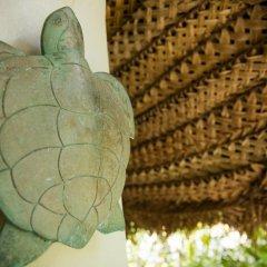 Отель Castaway Island Fiji 4* Стандартный номер с различными типами кроватей фото 12