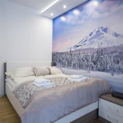 Отель Apartamenty Comfort & Spa Stara Polana Люкс повышенной комфортности фото 10