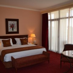 Georgia Palace Hotel & SPA комната для гостей фото 2