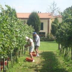 Отель Agriturismo L'Albara Италия, Лимена - отзывы, цены и фото номеров - забронировать отель Agriturismo L'Albara онлайн фото 3