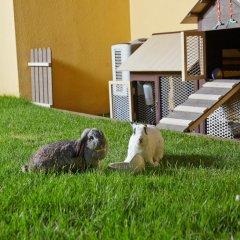 Отель Village Residence Robertson Quay с домашними животными