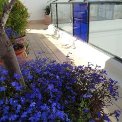 Отель La Casa Grande фото 8