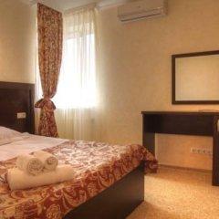 Vlada Hotel 3* Стандартный номер с различными типами кроватей фото 4