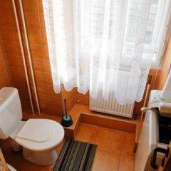 Отель Zlaty Jelen Апартаменты с различными типами кроватей фото 17