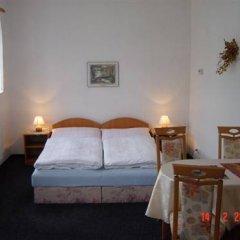 Отель Zlaty Jelen Апартаменты с различными типами кроватей