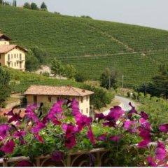 Отель Casa Svizzera Agriturismo Стандартный номер фото 9