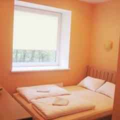 Гостевой дом Auksine Avis 3* Стандартный номер с двуспальной кроватью фото 9