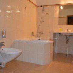 Гостиница Отельный комплекс Бахус Стандартный номер с различными типами кроватей фото 3