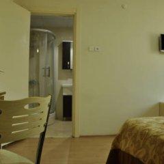 Ottoman Palace Hotel Edirne 3* Стандартный номер с двуспальной кроватью