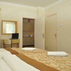 Ottoman Palace Hotel Edirne 3* Стандартный номер с различными типами кроватей фото 2