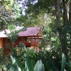 Отель Jungle House at Siboya Bungalows Бунгало с различными типами кроватей фото 14