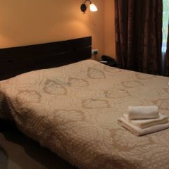 Адам Отель 3* Стандартный номер с различными типами кроватей фото 3