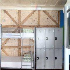 Alface Hostel Кровать в общем номере фото 21