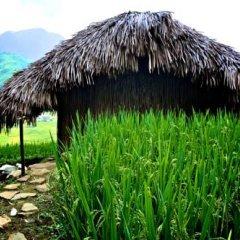 Отель H'mong Mountain Retreat 2* Бунгало с различными типами кроватей фото 6