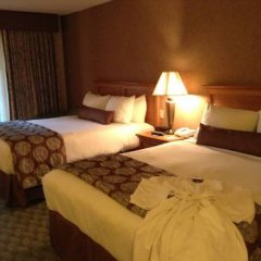 Отель Borrego Springs Resort and Spa 3* Стандартный номер с различными типами кроватей