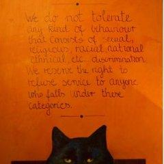 Stray Cat Hostel Стандартный номер двуспальная кровать фото 5