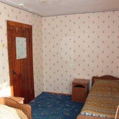 Гостиница Resort Avrora 2* Номер категории Эконом с двуспальной кроватью фото 2