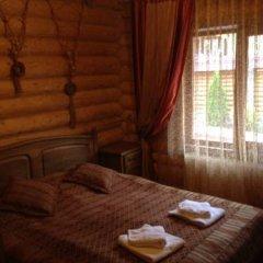 Гостиница Arnika Стандартный номер двуспальная кровать фото 4
