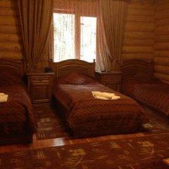 Гостиница Arnika Стандартный номер с различными типами кроватей фото 5