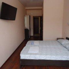 Гостевой дом Николина Фазенда 3* Стандартный номер с различными типами кроватей фото 9