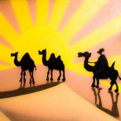 Faraon Hostel Стандартный номер с различными типами кроватей фото 5