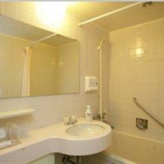 Hotel Lake Alster Alza Izumiotsu 3* Номер категории Эконом фото 2