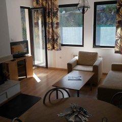 Апартаменты Christina Apartment In Laplandia Пампорово комната для гостей фото 4