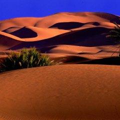 Отель Morocco Desert Trek Марокко, Мерзуга - отзывы, цены и фото номеров - забронировать отель Morocco Desert Trek онлайн спа