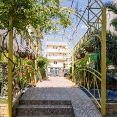 Гостиница Пальма в Сочи - забронировать гостиницу Пальма, цены и фото номеров фото 3